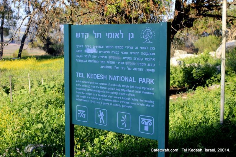 Tel Kedesh, Cades, Ramat Naftali, Naftali, Upper Galilee 033