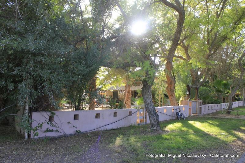Jezreel, Galilee, Valley, Deser, Jordan, Paran, Holy Land 058