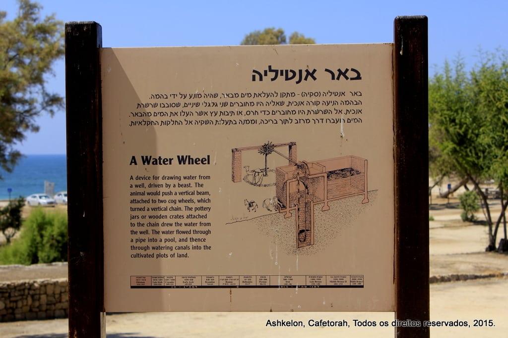 Ashkelon 007