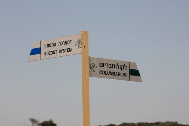 Beit-Shemesh, Adulam, Oved-Edom 244