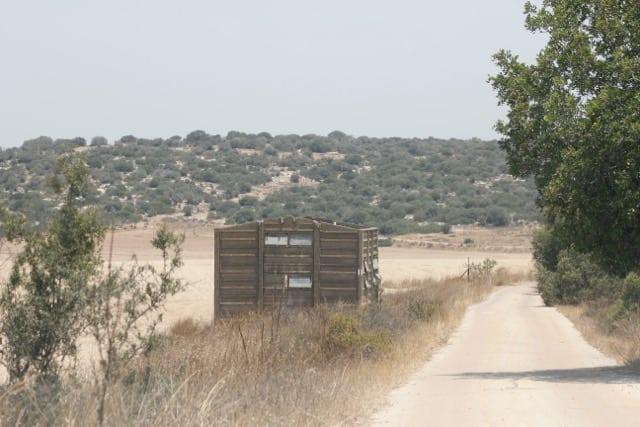 Beit-Shemesh, Adulam, Oved-Edom 248