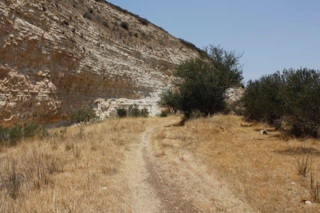 Beit-Shemesh, Adulam, Oved-Edom 283