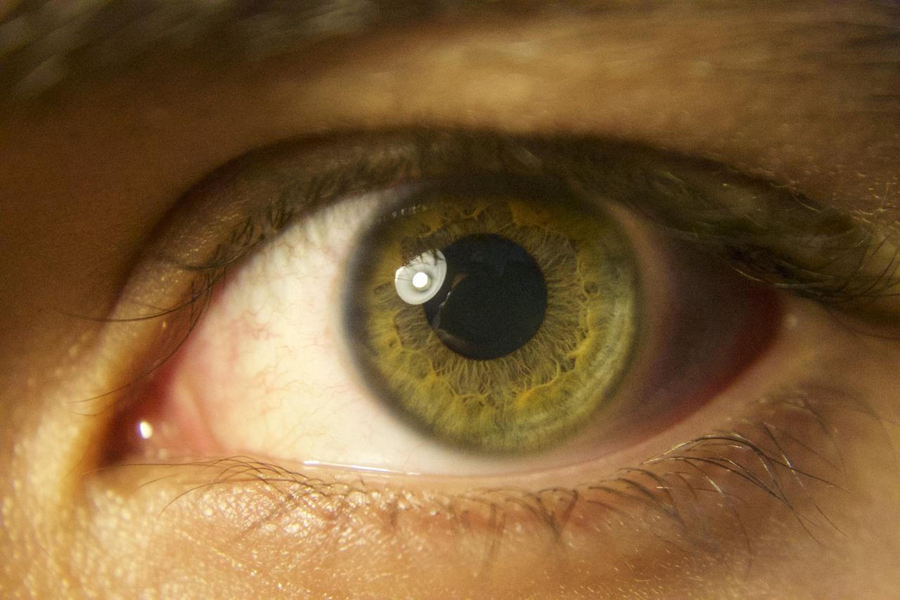 eye-1190430_1280