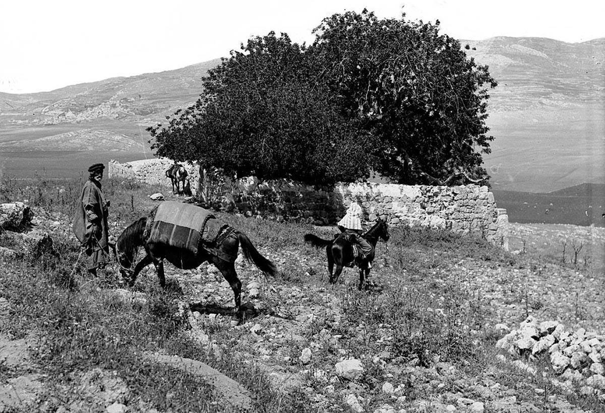 Colina de Finéias no começo do século XX